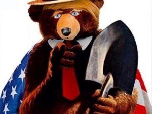 Trumpy Bear Art